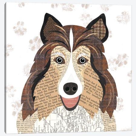 Shetland Sheepdog Canvas Print #SIH127} by Simon Hart Canvas Wall Art