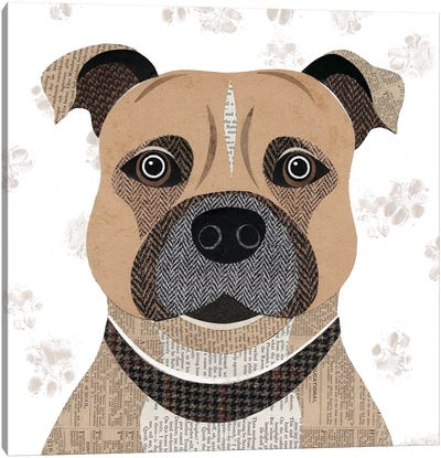 Staffie Canvas Art Print