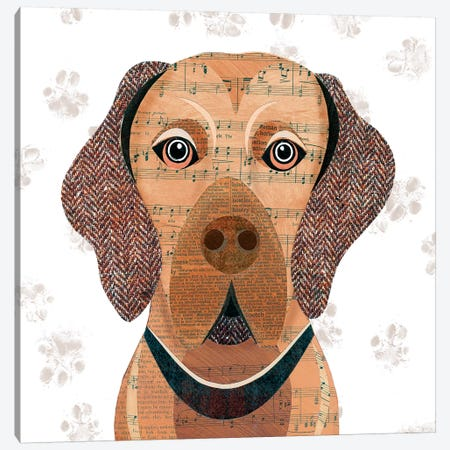 Vizsla Canvas Print #SIH135} by Simon Hart Art Print