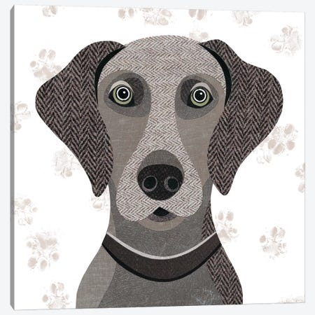 Weimaraner Canvas Print #SIH136} by Simon Hart Art Print