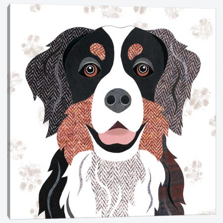 Bernese Mountain Dog Canvas Print #SIH35} by Simon Hart Canvas Print
