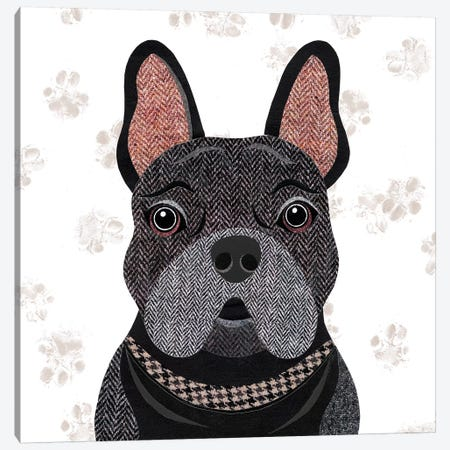 Black Frenchie Canvas Print #SIH37} by Simon Hart Canvas Art Print