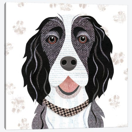 Black White Springer Spaniel Canvas Print #SIH38} by Simon Hart Canvas Wall Art