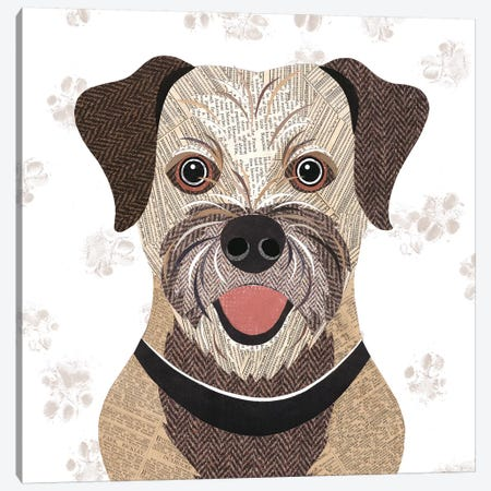 Border Terrier Canvas Print #SIH41} by Simon Hart Canvas Art Print