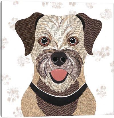 Border Terrier Canvas Art Print
