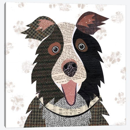 Border Collie Canvas Print #SIH42} by Simon Hart Canvas Print