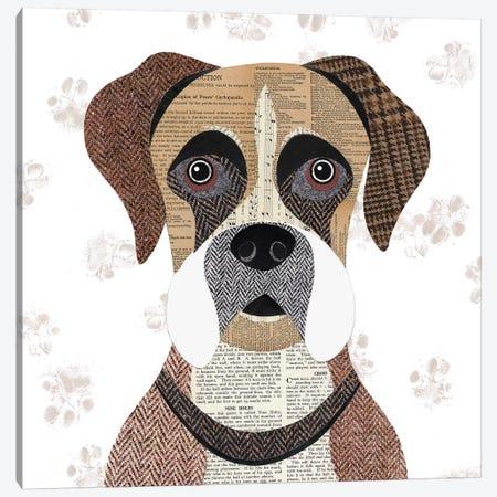 Boxer Canvas Print #SIH44} by Simon Hart Canvas Artwork