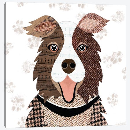 Brown Collie Canvas Print #SIH45} by Simon Hart Canvas Artwork