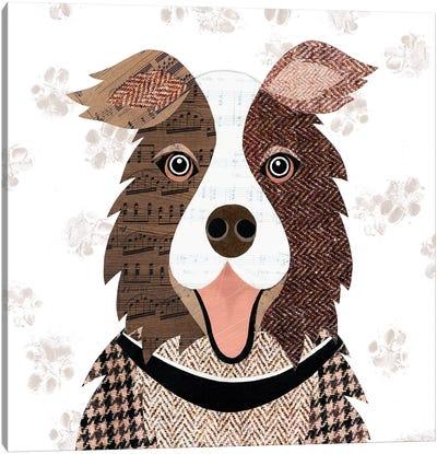 Brown Collie Canvas Art Print