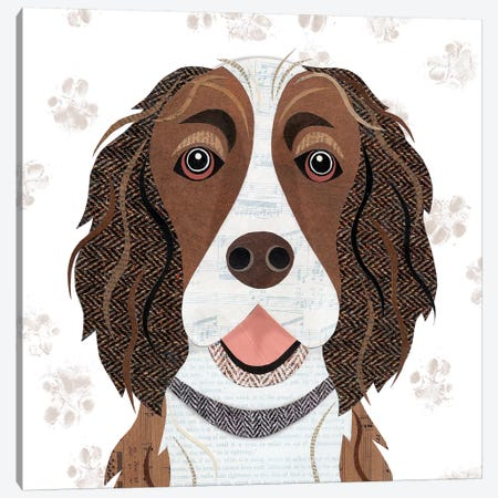 Brown & White Springer Canvas Print #SIH47} by Simon Hart Canvas Wall Art