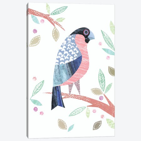 Bullfinch Canvas Print #SIH50} by Simon Hart Canvas Wall Art