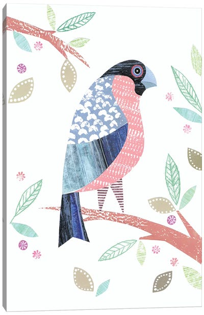 Bullfinch Canvas Art Print