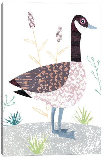 Canada Goose Canvas Art Print