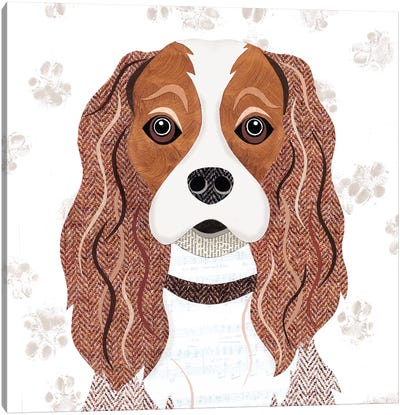 Cavalier King Charles Canvas Art Print