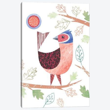 Chaffinch Canvas Print #SIH54} by Simon Hart Canvas Print