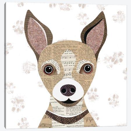 Chihuahua Canvas Print #SIH56} by Simon Hart Canvas Art Print