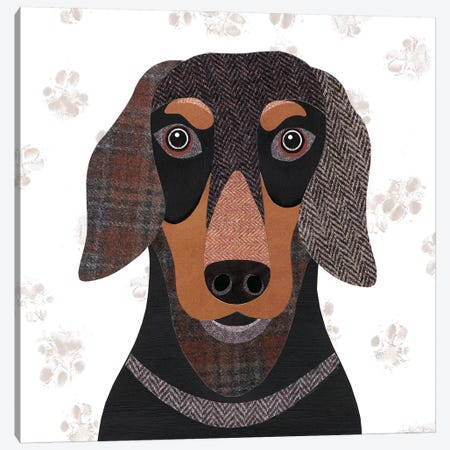 Dachshund Canvas Print #SIH65} by Simon Hart Canvas Wall Art