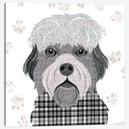 Dandie Dinmont Canvas Print #SIH67} by Simon Hart Canvas Wall Art