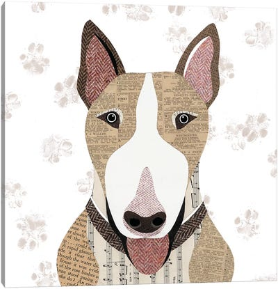 English Bull Terrier Canvas Art Print