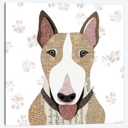 English Bull Terrier Canvas Print #SIH74} by Simon Hart Canvas Art Print