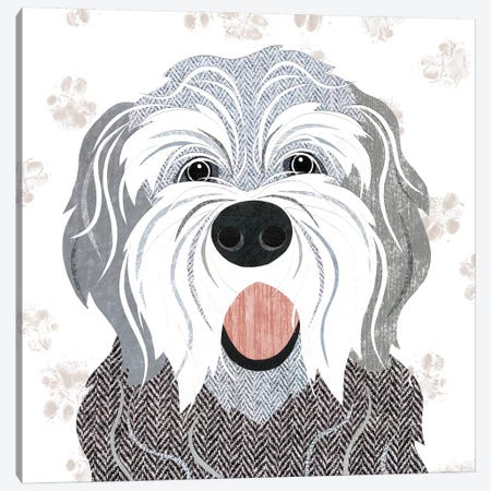 English Sheepdog Canvas Print #SIH76} by Simon Hart Canvas Art Print