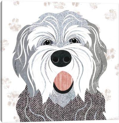 English Sheepdog Canvas Art Print