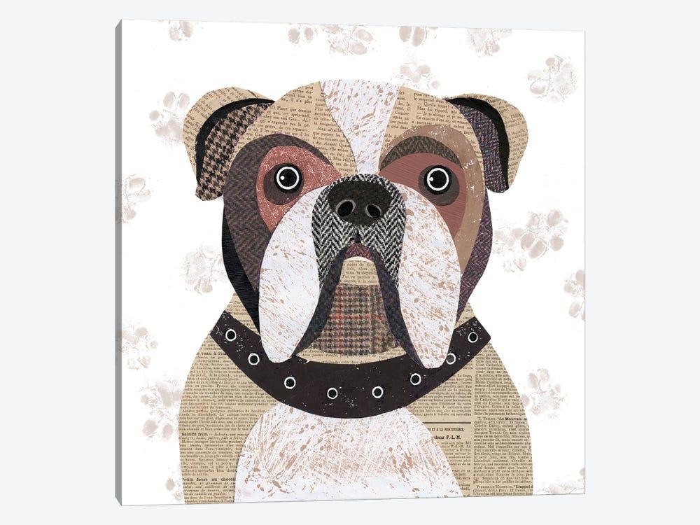 English Bulldog by Simon Hart 1-piece Canvas Art