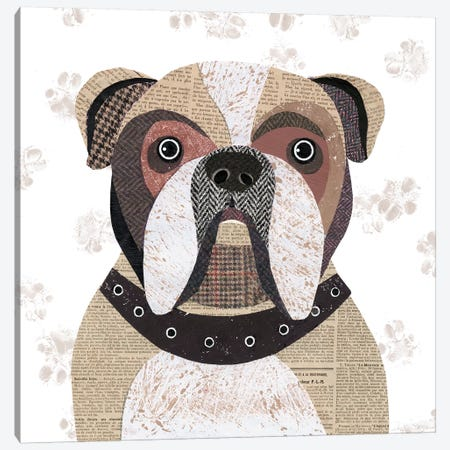 English Bulldog Canvas Print #SIH77} by Simon Hart Canvas Art Print