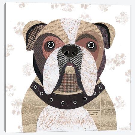 English Bulldog Canvas Print #SIH77} by Simon Hart Canvas Art Print