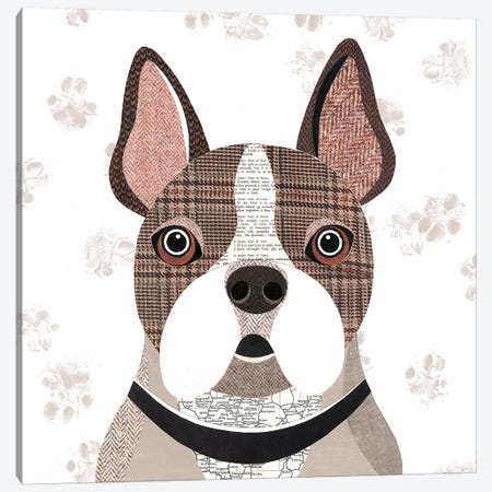 Frenchie Canvas Print #SIH80} by Simon Hart Canvas Art Print