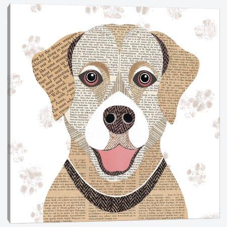Golden Labrador Canvas Print #SIH83} by Simon Hart Canvas Art Print