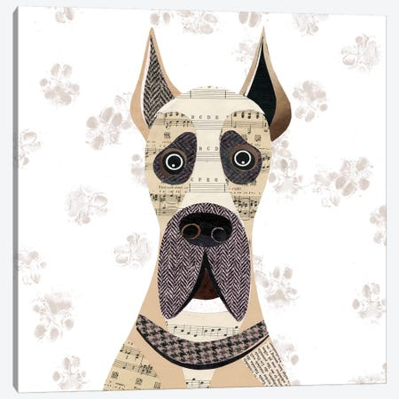 Great Dane Pointy Ears Canvas Print #SIH87} by Simon Hart Canvas Artwork
