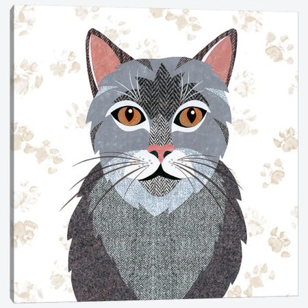 Grey Tabby Canvas Print #SIH88} by Simon Hart Art Print