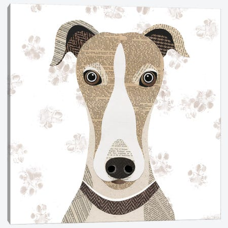 Greyhound Canvas Print #SIH89} by Simon Hart Canvas Print