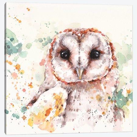 Barn Owl Canvas Print #SIL10} by Sillier Than Sally Canvas Art