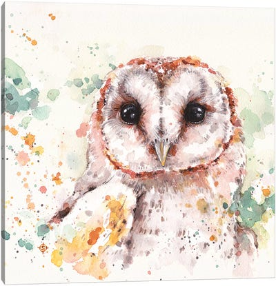 Barn Owl Canvas Art Print