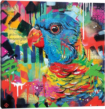 A Chattering Rainbow Canvas Art Print