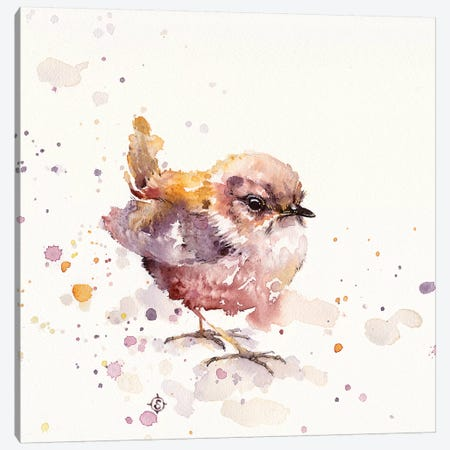 Fluffy Le Wren Canvas Print #SIL22} by Sillier Than Sally Canvas Art Print
