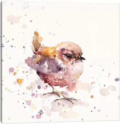Fluffy Le Wren Canvas Art Print