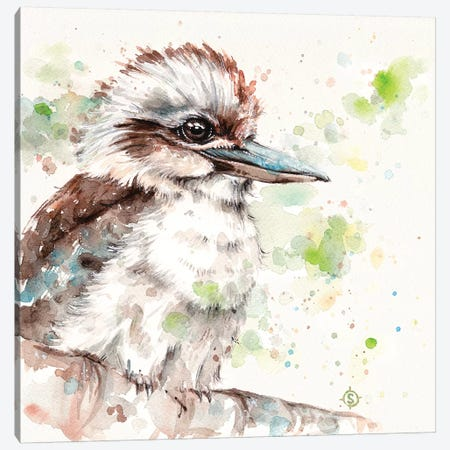 Kookaburra's Gaze Canvas Print #SIL31} by Sillier Than Sally Canvas Wall Art