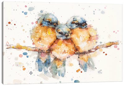 Little Bluebirds Canvas Art Print
