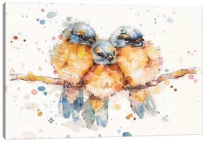 Little Bluebirds Canvas Art Print