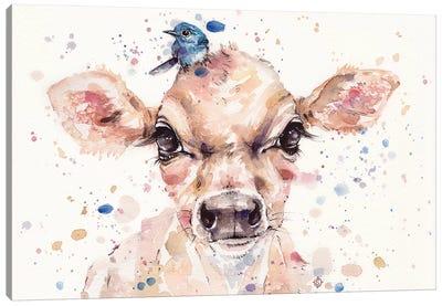 Little Calf Canvas Art Print