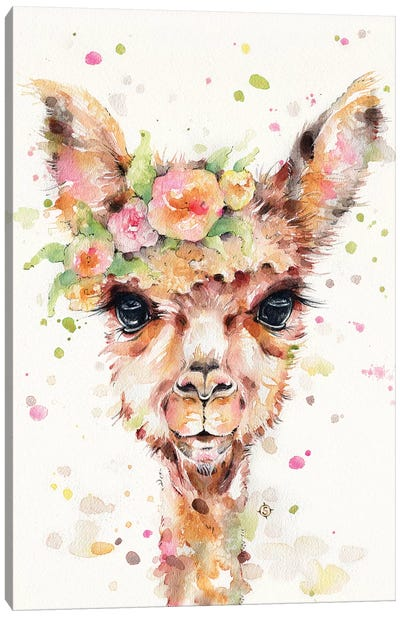 Little Llama Canvas Art Print