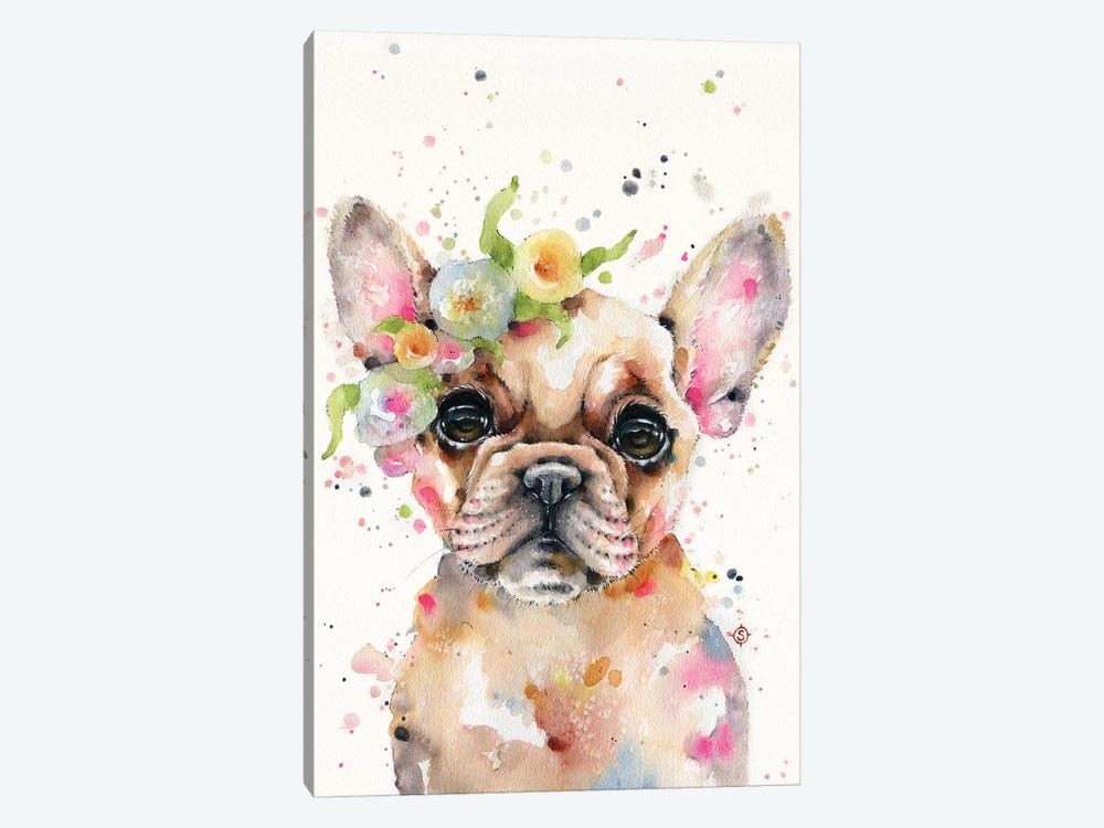 Little Miss Frenchie by Sillier Than Sally 1-piece Canvas Art Print