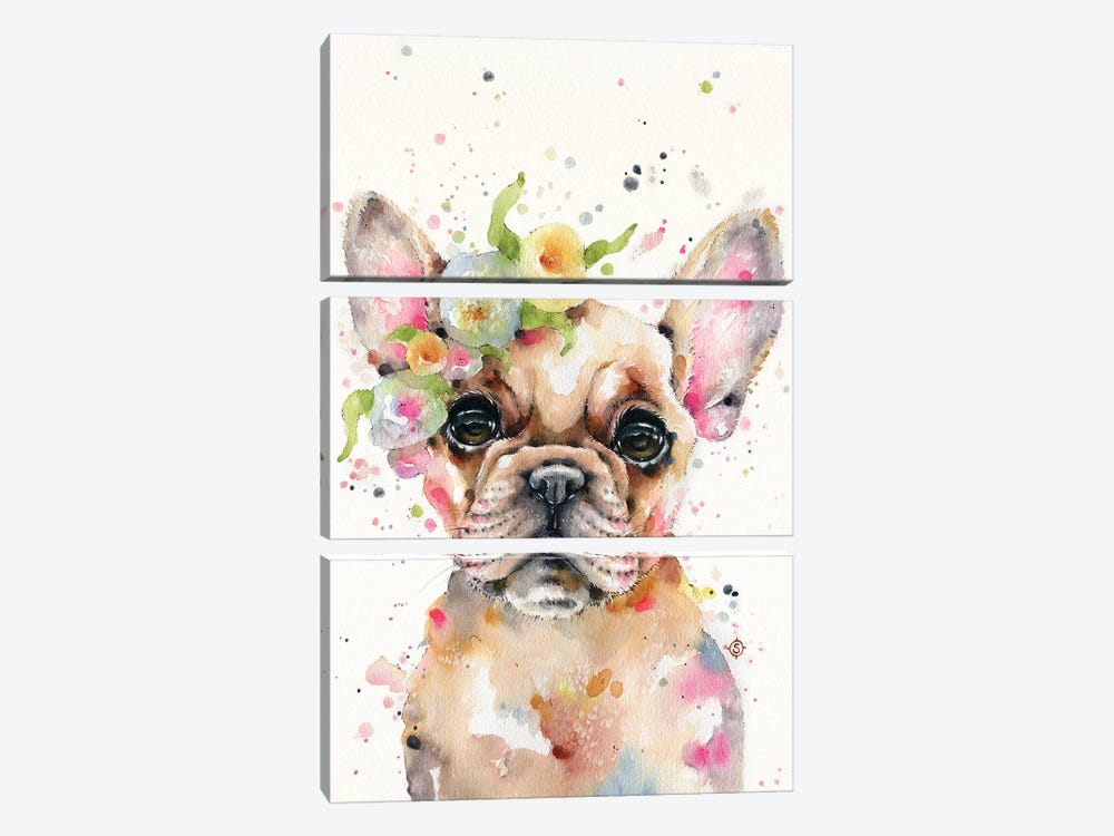 Little Miss Frenchie by Sillier Than Sally 3-piece Art Print