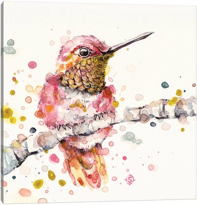 Oh So Fluffy Canvas Art Print