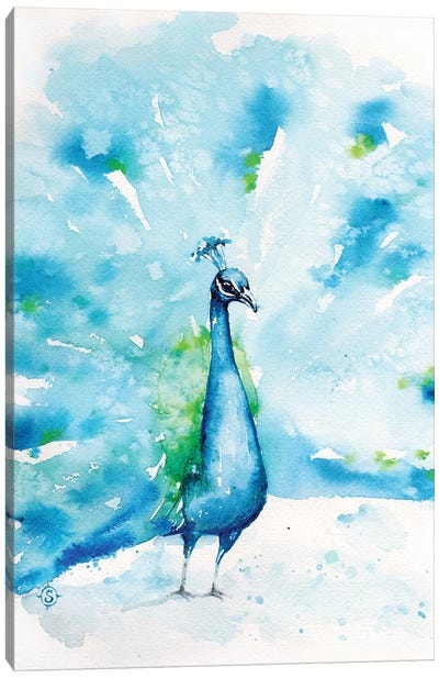 Peacocks About Canvas Art Print