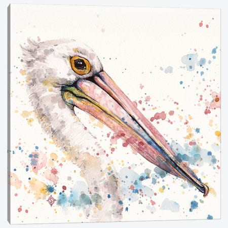 Pelicans About Canvas Print #SIL58} by Sillier Than Sally Canvas Art