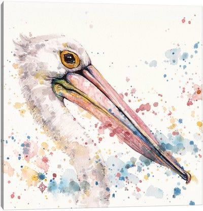 Pelicans About Canvas Art Print